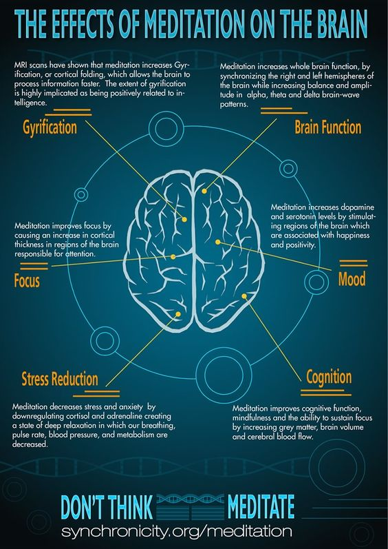 The effects of meditation on the brain #infographic #meditation