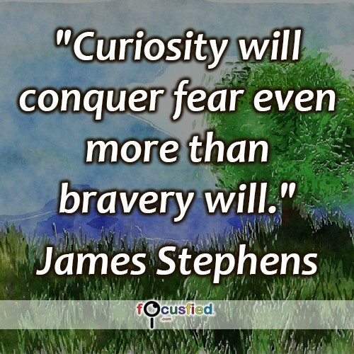 James-Stephens-Curiosity-will-conquer-Focusfied