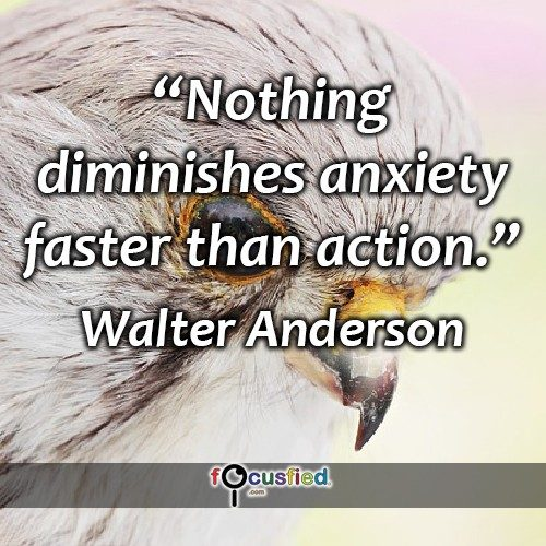 Walter-Anderson-Nothing-diminishes-anxiety-2-Focusfied