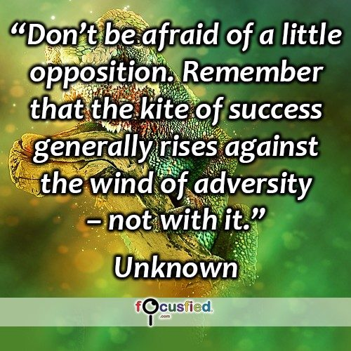 Don't be afraid of a little opposition. Remember that the kite of success generally rises against the wind of adversity – not with it. -Unknown